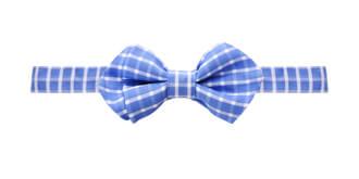 Peteliškė OS 1 marga ryški spalvota mėlyna
